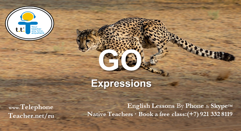 Learning Other Expressions With The Word: ´Go´
